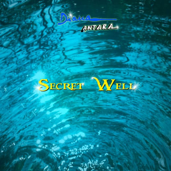 Secret Well