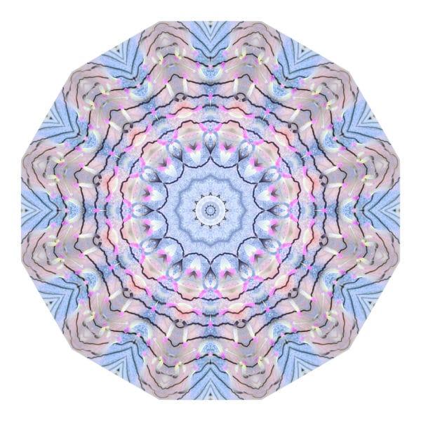 Jellyfisch 03