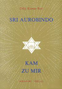 Sri Aurobindo kam zu mir